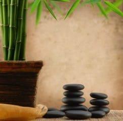bamboo-w-stones